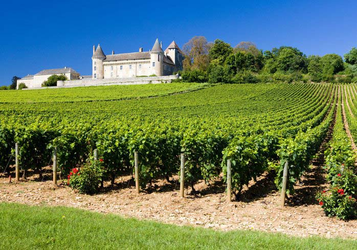 A landscape shaped by old castles and palaces in the midst of wine growing regions